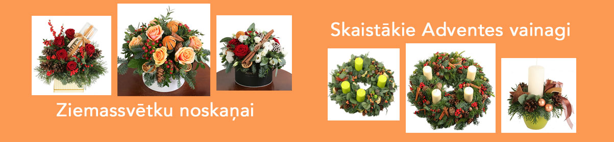 Ziemas ziedu kolekcija