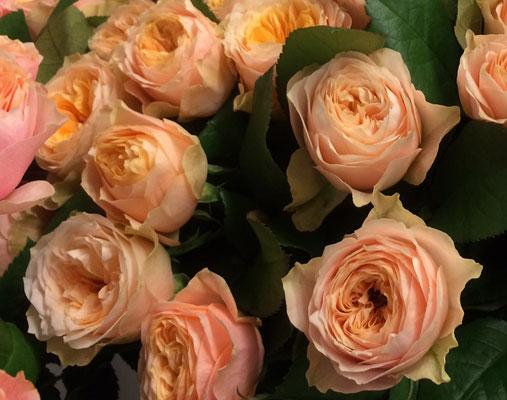 rozes-ar-piegadi-zieduveikals