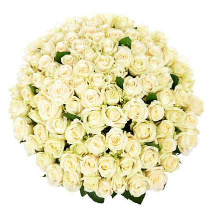 Ziedi Rīga. Iespaidīgs baltu rožu pušķis. 101 balta roze. Rožu garums 60 cm.  Ziedu klāsts ir ļoti plašs. Var gadīties, ka