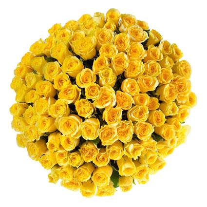 Ziedu piegāde Rīgā. Iespaidīgs dzeltenu rožu pušķis. 101 dzeltena roze. Rožu garums 60 cm.   Ziedu klāsts ir ļoti plašs.