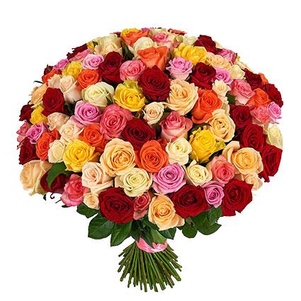 Ziedu piegāde Latvijā. Iespaidīgs pušķis no 101 krāsainas rozes. Rožu garums 60 cm.  Ziedu klāsts ir ļoti plašs. Var