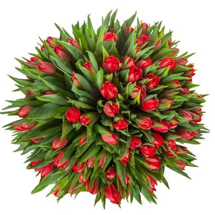 Ziedi Rīga. 101 sarkana tulpe pušķī.  Ziedu klāsts ir ļoti plašs. Var gadīties, ka izvēlētie ziedi var nebūt pieejami kādā