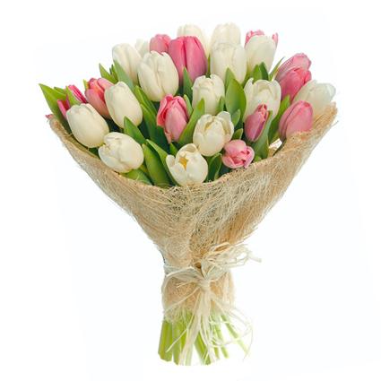 Tulpju pušķis: Pavasara kompliments