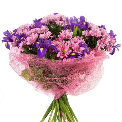 Ziedi un to piegāde. Ziedu pušķis no rozā sīkziedu krizantēmām, ziliem īrisiem, dekoratīviem zaļumiem. Pušķis ietīts rozā