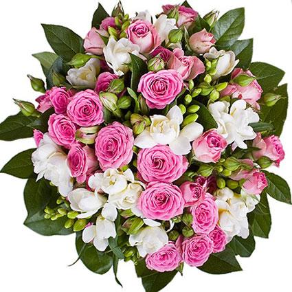 Цветы: Доброе утро, красотка!