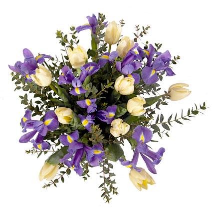 Ziedi ar piegādi. Pavasara ziedu pušķis no baltām tulpēm un ziliem īrisiem.  Ziedu klāsts ir ļoti plašs. Var gadīties, ka