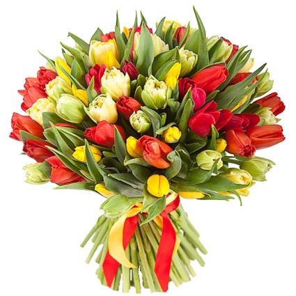 Ziedu piegāde. Pušķī 51 vai 31 sarkanas, dzeltenas un baltas tulpes.