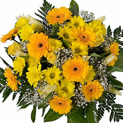 Цветы: Лимоны и апельсины
