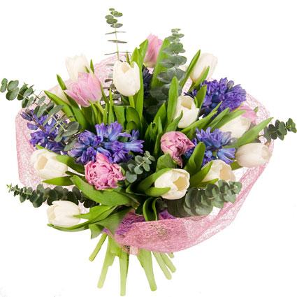 Ziedi un to piegāde. Smaržīgs pavasara ziedu pušķis no baltām tulpēm, rozā tulpēm,  zilām hiacintēm, eikalipta zaļumiem