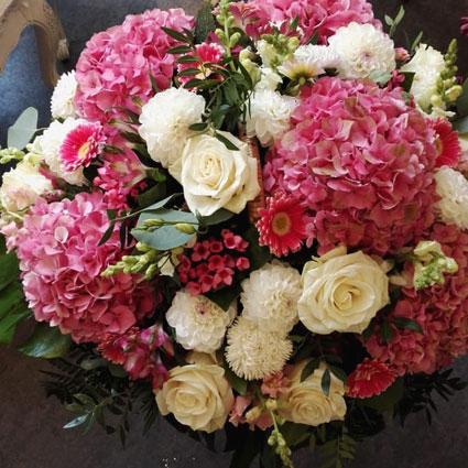 Ziedu pušķis: Hortenziju krāšņums