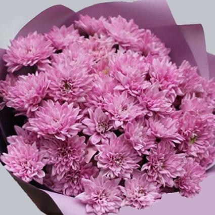 Ziedu pušķis no 15 rozā krizantēmām.