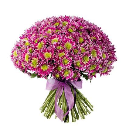 Ziedi. Apjomīgs ziedu pušķis no 45 rozā krizantēmām.  Ziedu klāsts ir ļoti plašs. Var gadīties, ka izvēlētie ziedi var