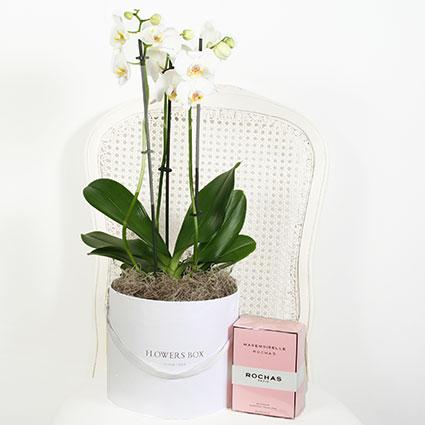 Ziedi un smaržas ROCHAS Mademoiselle Rochas EDP 90 ml