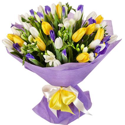 Ziedi un to piegāde. Krāsainu ziedu pušķis no baltām tulpēm, dzeltenām tulpēm, ziliem īrisiem, baltām frēzijām dekoratīvā