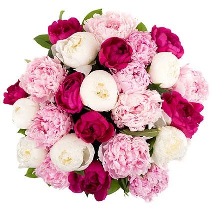 Ziedu piegāde. 25 tumši rozā, gaiši rozā un baltas peonijas greznā pušķī.  Ziedu klāsts ir ļoti plašs. Var gadīties, ka