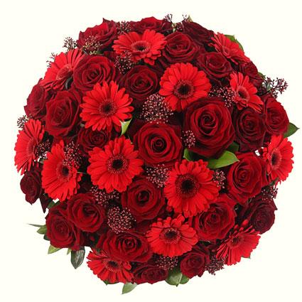 Ziedu piegāde Rīgā - ekspresīvs ziedu pušķis no sarkanām rozēm, sarkanām gerberām un dekoratīviem sezonas zaļumiem