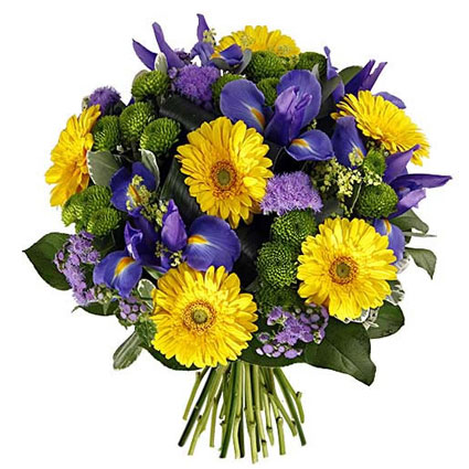 Flowers delivery. Bouquet of yellow gerberas, blue irises, green chrysanthemums, fine decorative flowers and seasonal