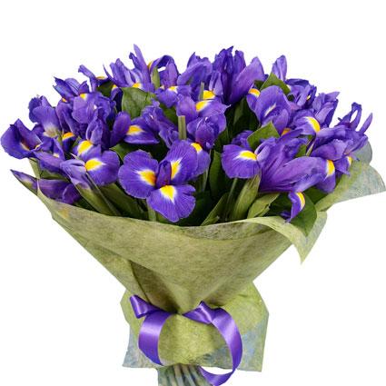 Ziedu piegāde. Skaists pušķis no 35 ziliem īrisiem.  Ziedu klāsts ir ļoti plašs. Var gadīties, ka izvēlētie ziedi var