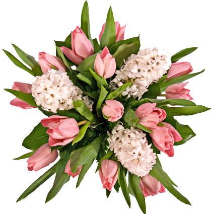 Ziedi ar piegādi. 15 rozā tulpes un 3 rozā hiacintes pavasara ziedu pušķī.  Ziedu klāsts ir ļoti plašs. Var gadīties, ka