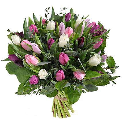 Ziedu piegāde Latvijā. Pavasara ziedu pušķī 31 balta, rozā un violeta tulpe ar dekoratīviem zaļumiem.  Ziedu klāsts ir