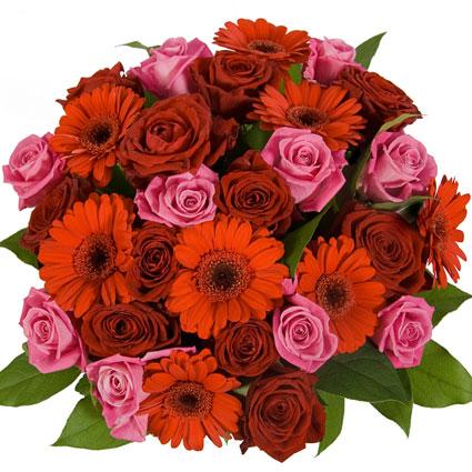 Ziedu veikals. Ziedu pušķis no sarkanām rozēm, rozā rozēm, sarkanām gerberām, dekoratīviem zaļumiem.  Ziedu klāsts ir ļoti