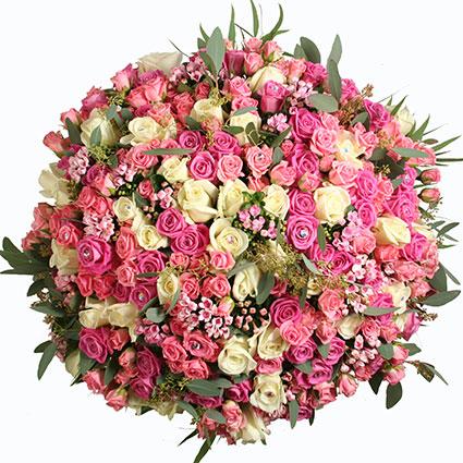 Ziedu piegāde. Brīnišķīgajā pušķī 105 rozā un baltas rozes, dekoratīvās bouvardias un eikalipts.  Ziedu klāsts ir ļoti
