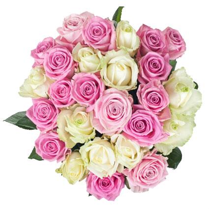Ziedu piegāde Latvijā. Ziedu pušķis no 25 baltām un rozā rozēm. Rožu garums 60 cm.  Ziedu klāsts ir ļoti plašs. Var