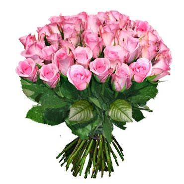 Ziedi ar piegādi - rozā rožu pušķis ar 15 vai 31 rozā rozi, rožu garums 60 cm