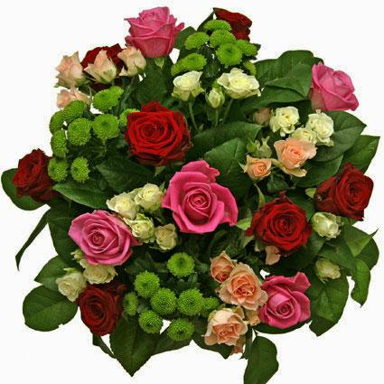Ziedi. Raibs ziedu pušķis no sarkanām un rozā rozēm ,rozā un baltām krūmrozēm, zaļām krizantēmām un dekoratīviem