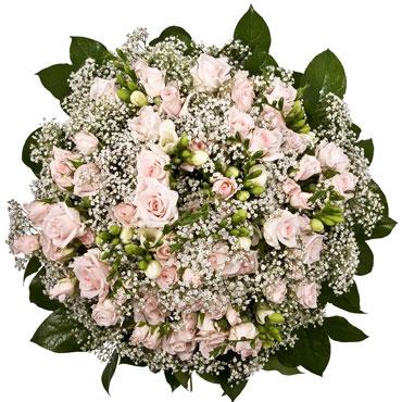 Ziedi un to piegāde. Rozā tā ir jautrība. Tā nes vēstījumu par laimi un prieku, saldmi un poētisku romantiku. Rozā rozes ir
