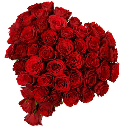 Flower delivery Latvia. Heart shaped flower bouquet of 33 or 55 red roses.