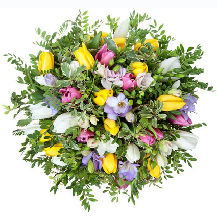 Flower bouquet of yellow, pink, white tulips, white, blue freesias and decorative seasonal foliage.