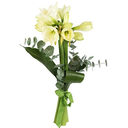Ziedi un to piegāde. 3 vai 5 balti amariļļi dekoratīvā noformējumā.  Ziedu klāsts ir ļoti plašs. Var gadīties, ka