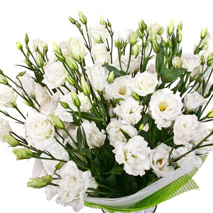 Ziedu piegāde Latvijā. Grezns pušķis no 29 vai 15 baltām lizantēm dekoratīvā saiņojumā.  Ziedu klāsts ir ļoti plašs. Var