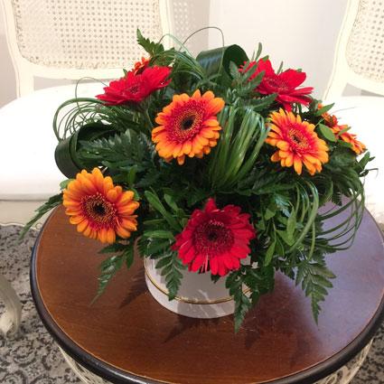 Ziedu kastītē sārtas un oranžas gerberas ar dekoratīviem zaļumiem, ir iespējama ziedu piegāde