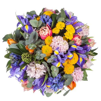 Ziedu piegāde Latvijā. Hiacintes un tulpes ziedu pušķī.  Ziedu klāsts ir ļoti plašs. Var gadīties, ka izvēlētie ziedi var