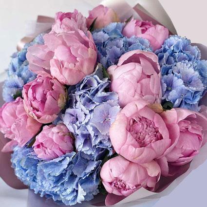 Grezns pušķis no rozā peonijām un zilām hortenzijām
