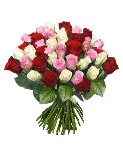 Ziedi ar kurjeru. Greznajā rožu pušķī 15 sarkanas, 15 baltas un 15 rozā rozes.  Ziedu klāsts ir ļoti plašs. Var gadīties,