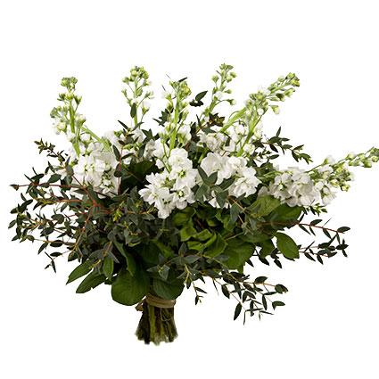 Ziedi Latvijā. Pušķis no 15 baltām lefkojām ar sezonāliem zaļumiem.  Ziedu klāsts ir ļoti plašs. Var gadīties, ka