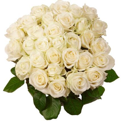 Ziedi Rīga. Ziedu pušķis no 35 baltām rozēm. Rožu garums 60 cm.  Ziedu klāsts ir ļoti plašs. Var gadīties, ka izvēlētie
