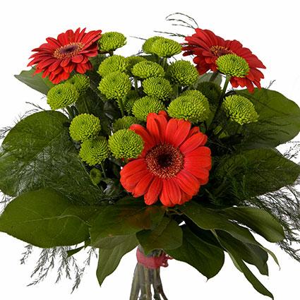 Ziedu piegāde. Ziedu pušķis no sarkanām gerberām, zaļām krizantēmām un dekoratīviem zaļumiem.  Ziedu klāsts ir ļoti plašs.