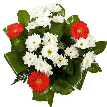 Ziedi ar kurjeru. Burvīgs ziedu pušķis no sarkanām gerberām un baltām krizantēmām. Ziedu klāsts ir ļoti plašs. Var