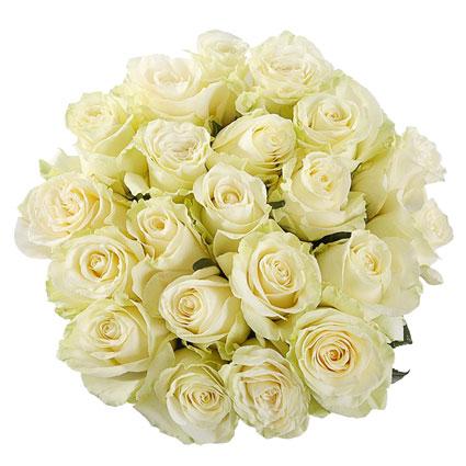Ziedu pušķī 21 balta roze. Rožu garums 60 cm. Ziedu piegāde Rīgā.