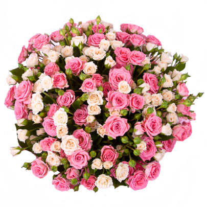 Flowers delivery. Different shades of pink in this charming bouquet of 25 sprayroses.