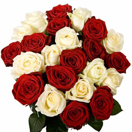 Ziedi ar piegādi. Pušķis no 23 baltām un sarkanām rozēm. Rožu garums 60 cm.  Ziedu klāsts ir ļoti plašs. Var gadīties, ka