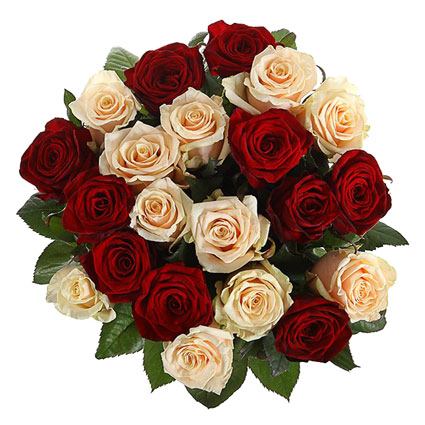 Bouquet of 21 red and cream roses