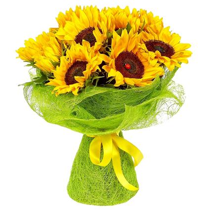 Ziedu piegāde - deviņas saulespuķes pušķī un dekoratīvā saiņojumā.