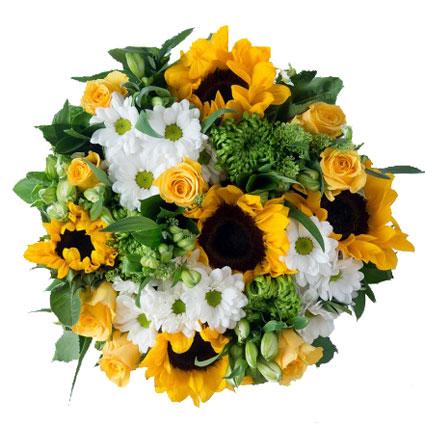 Ziedi: Vasaras brīvdienas