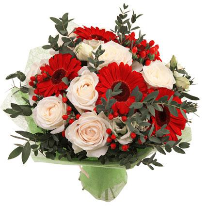 Ziedi Latvijā. Baltu rožu un sarkanu gerberu pušķis īpašam sveicienam, papildināts ar sarkanām ogām un eikaliptu