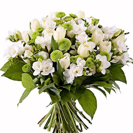 Ziedu piegāde Latvijā. Ziedu pušķis no baltām frēzijām, gaišām tulpēm un zaļām sīkziedu krizantēmām.  Ziedu klāsts ir ļoti